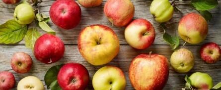 Alte Apfelsorten Querkochen