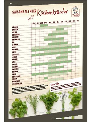 Kräuter-Saisonkalender