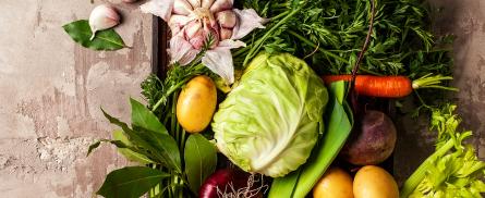 Gemüse Kälte