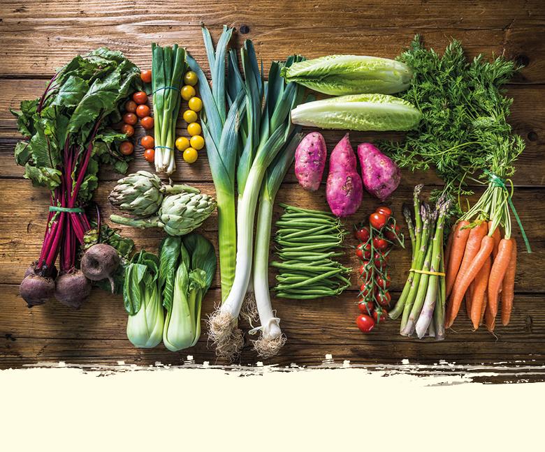 Gemüse Saison